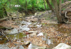 This natural stream was saved from destruction and risk of contamination
